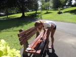 Cleaning benches